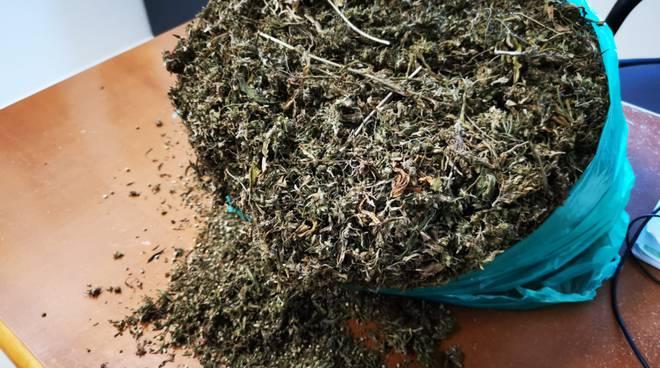 carabinieri-marijuana-147724