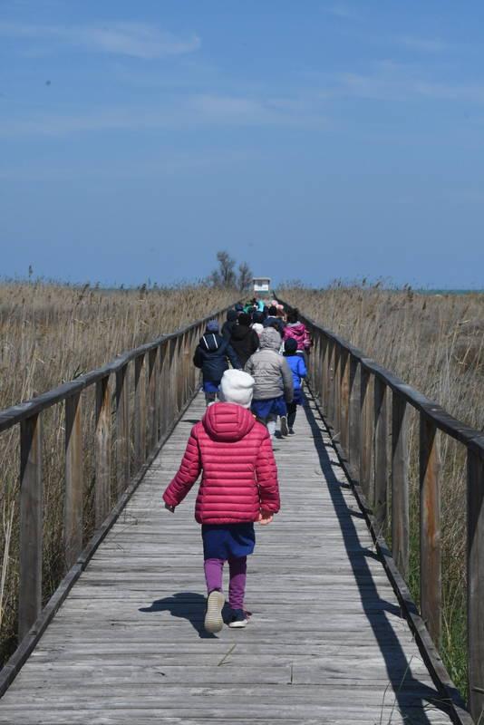 alunni su spiaggia Campomarino