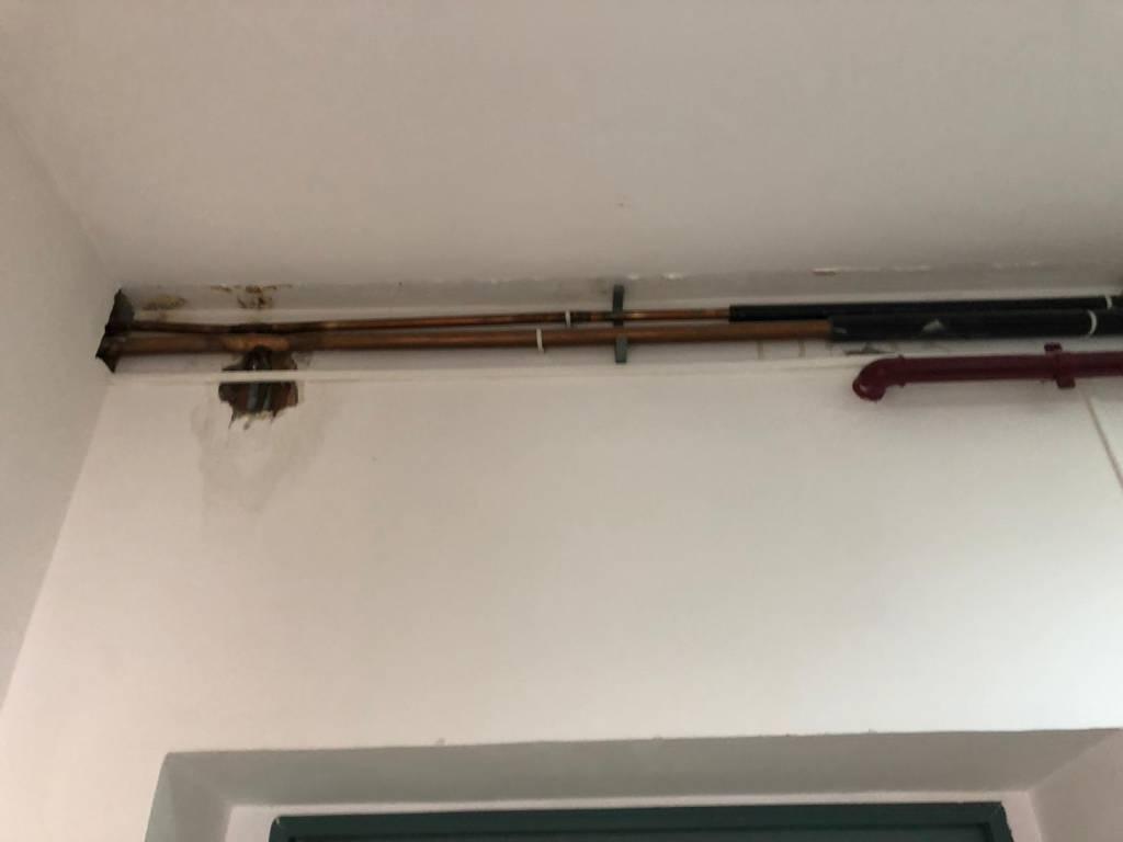 muffa-crepe-e-umidita-uffici-curia-147822
