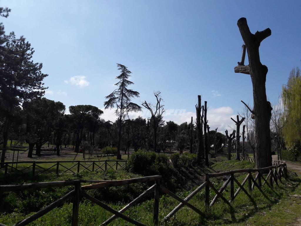 Parco comunale Termoli