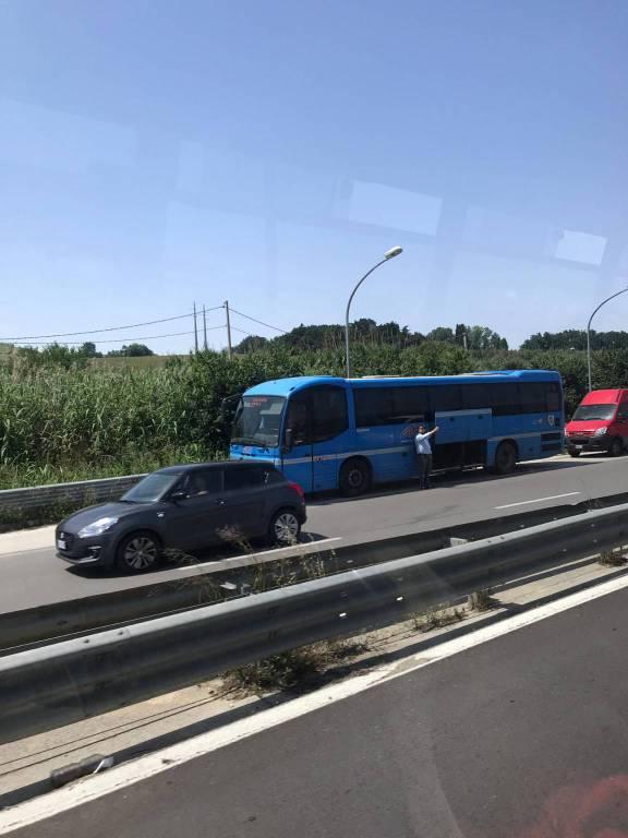 Disagi autobus