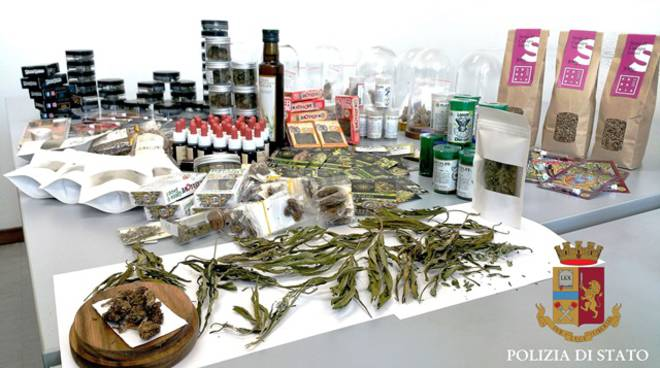cannabis light sequestrata dalla Polizia