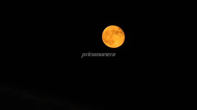 luna fragola Campobasso