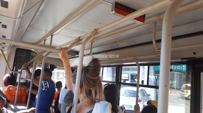 sun-bus-navetta-autobus-viaggiatori-dentro-153515