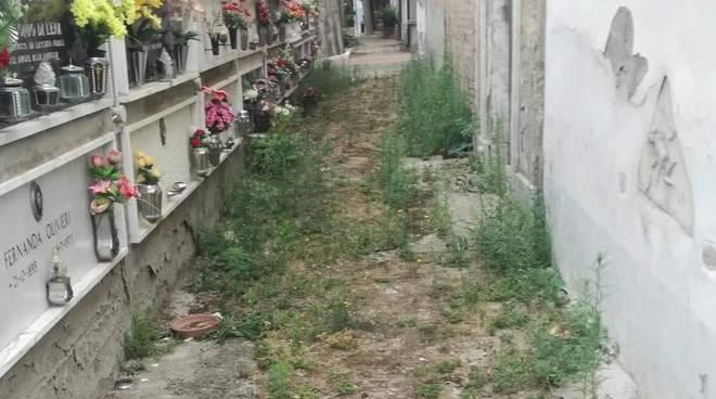 Erbacce ed in incuria al cimitero di Larino