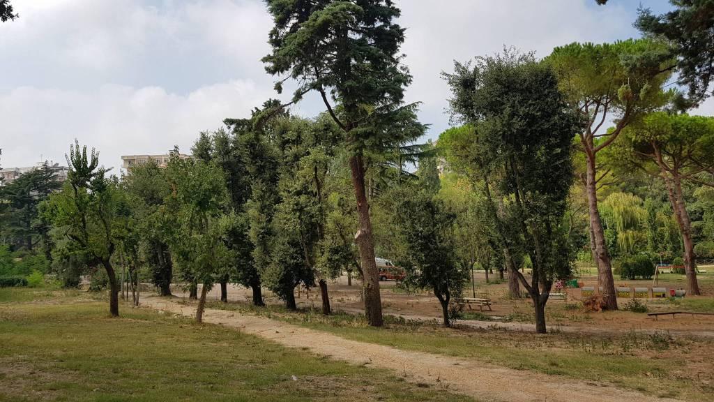 parco-comunale-termoli-157680