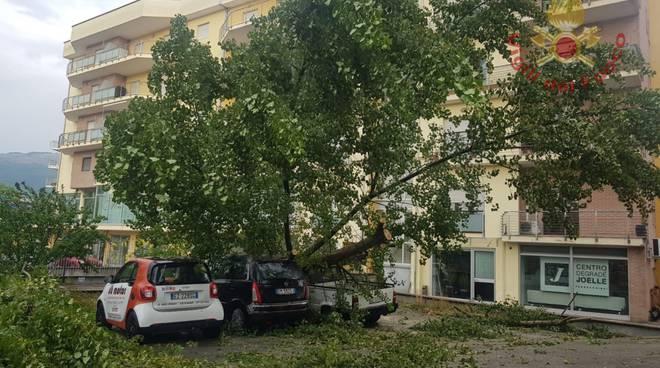 maltempo alberi caduti Isernia