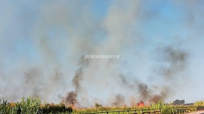 incendio-campomarino-lido-158502