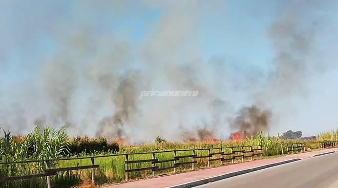 incendio-campomarino-lido-158503