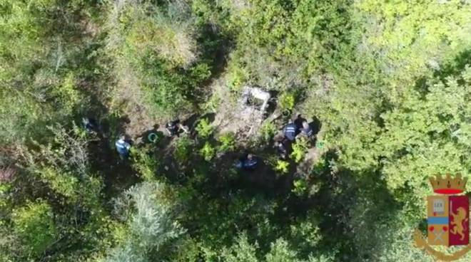 marijuana-piantagione-scoperta-drone-159933