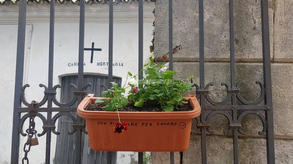 vaso cimitero di guglionesi