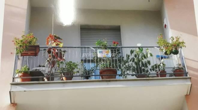 concorso-balcone-fiorito-162202
