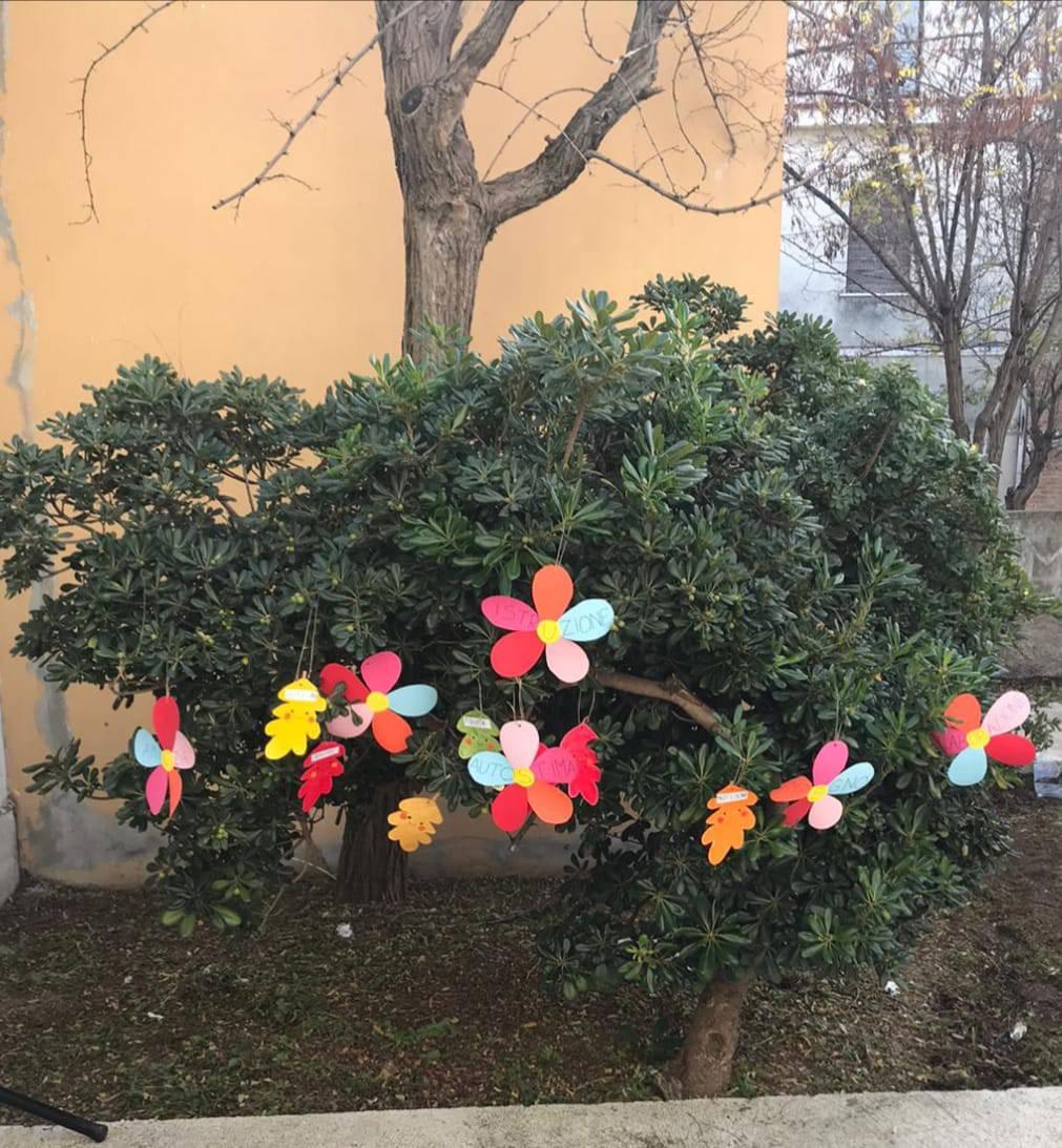 festa dell'albero scuola dewey