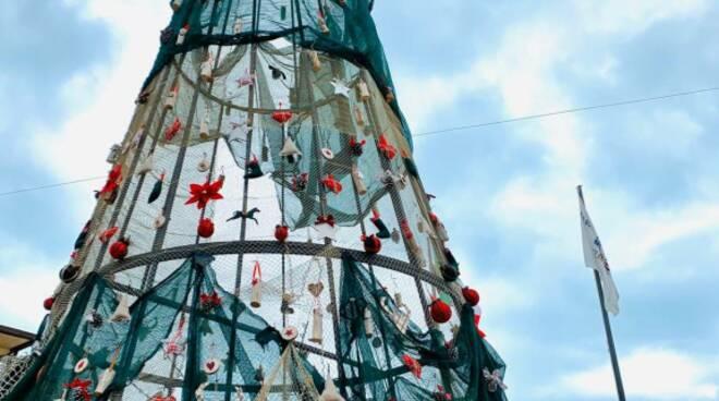 albero porto turistico