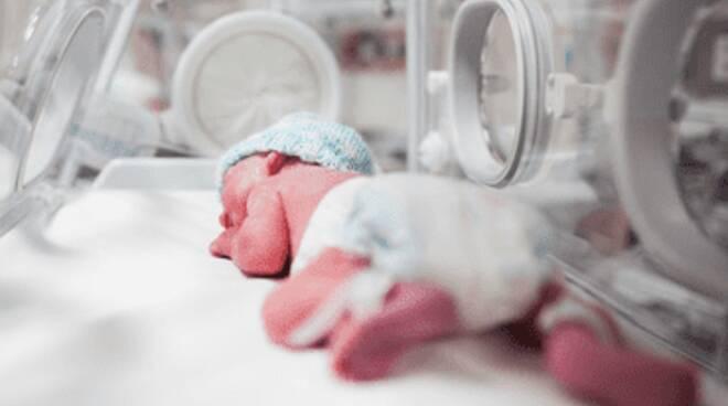 incubatrice neonato