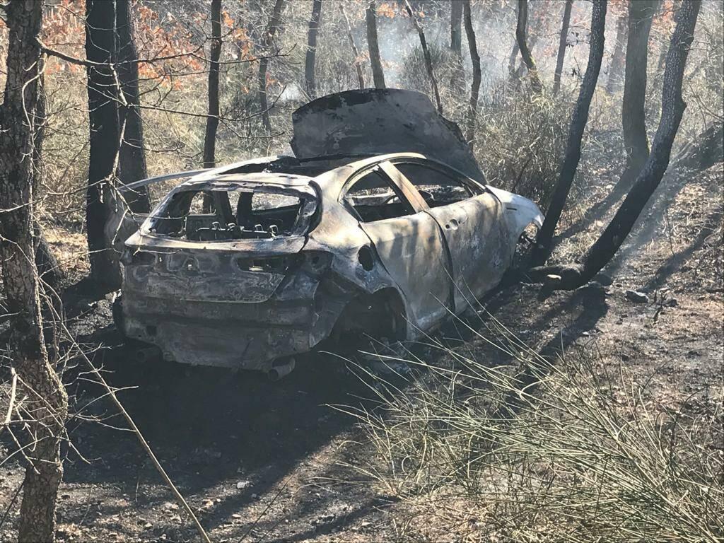 Auto bruciata salcito