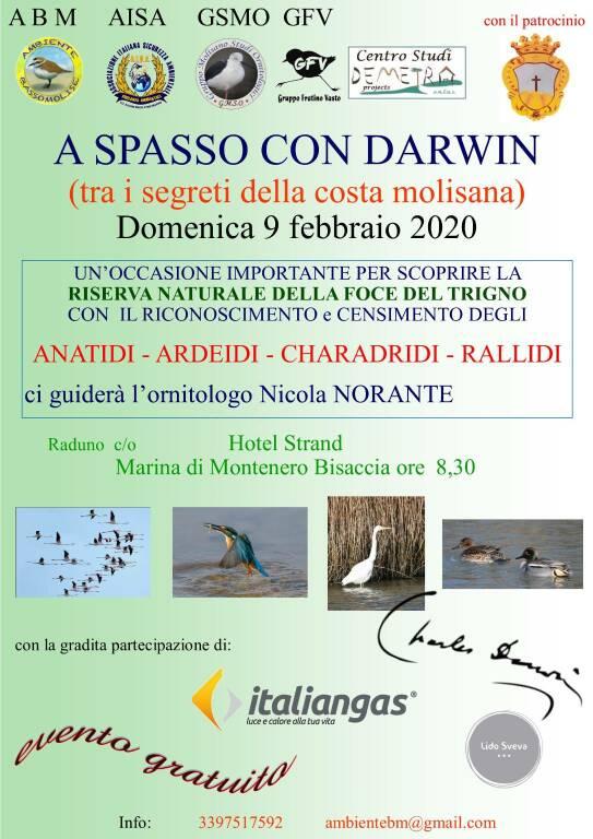 a spasso con Darwin