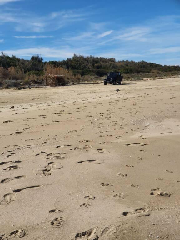 safari molise jeep in spiaggia