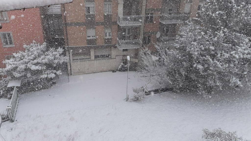 Neve 24 marzo 2020