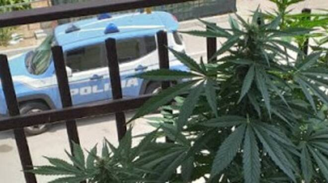 marija balcone e polizia