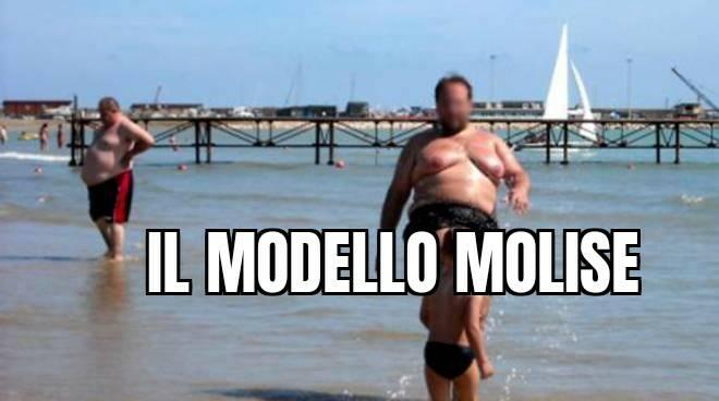 Modello molise