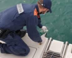 capitaneria di porto controlli mare
