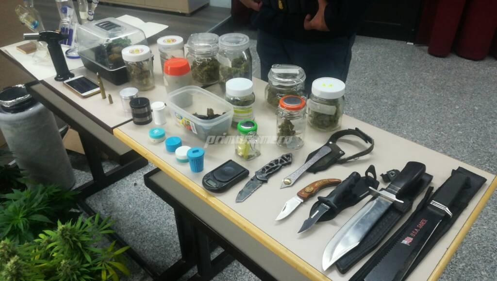 arresto marijuana droga piante questura polizia