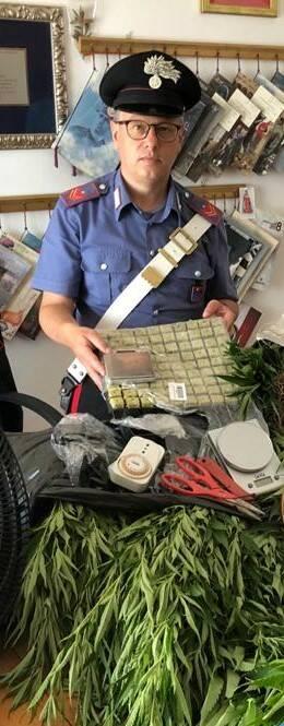 campomarino arresto droga marijuana carabinieri