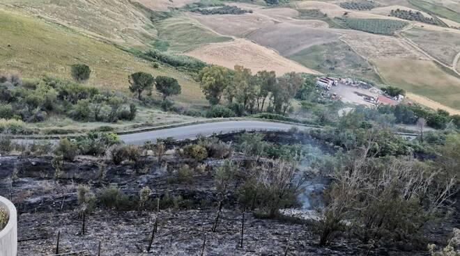 Costone bruciato incendi fuoco terra bruciata
