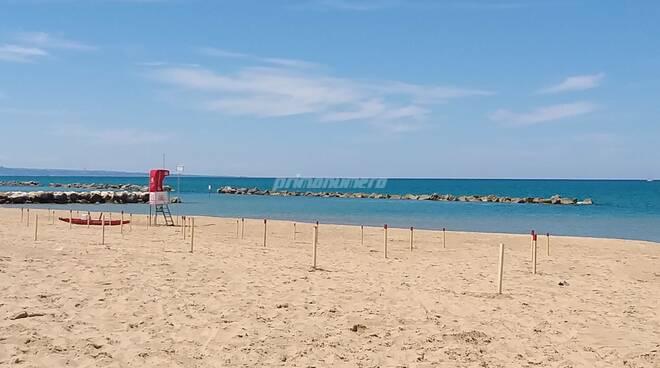 spiaggia libera termoli pali