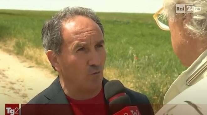 gino mascia sindaco Cercemaggiore