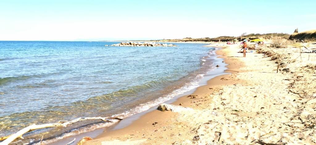 spiaggia selvaggia Campomarino