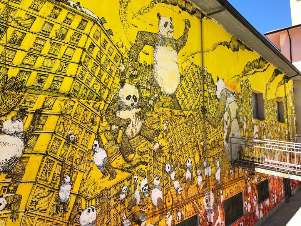 murales blu pandemia campobasso street art