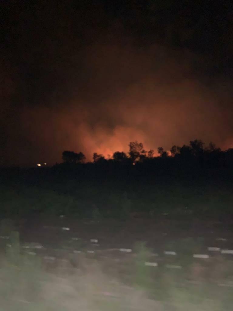 Incendio bosco fantine Campomarino