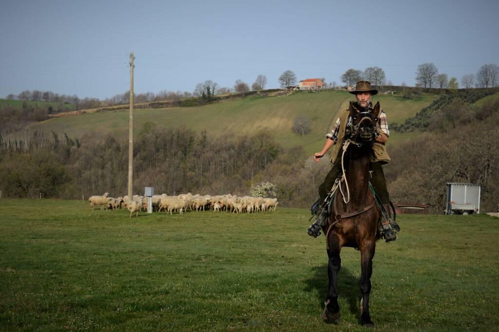 Mario Borraro con le pecore