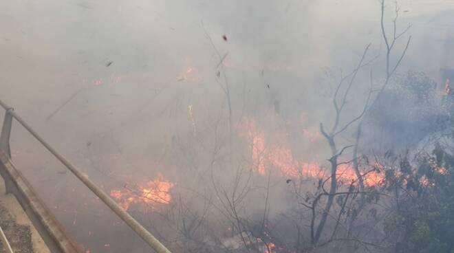 incendio campomarino