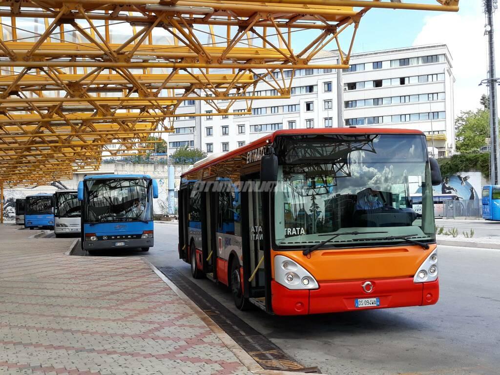Autobus terminal Campobasso