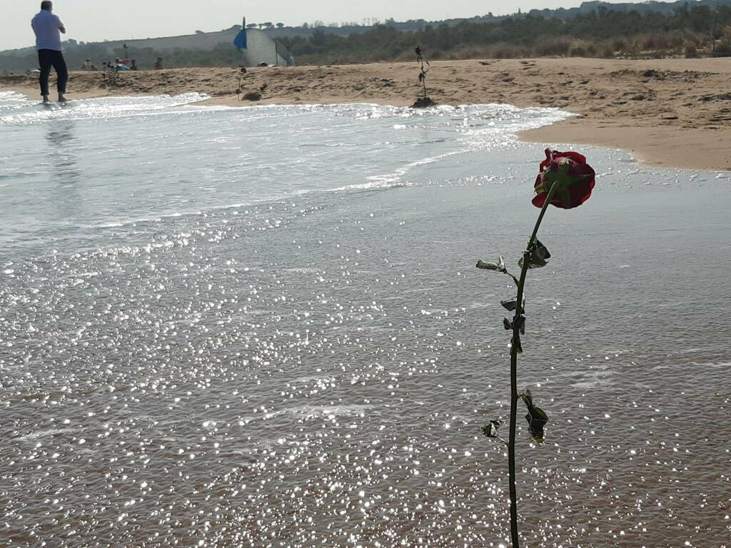 rose spiaggia petacciato