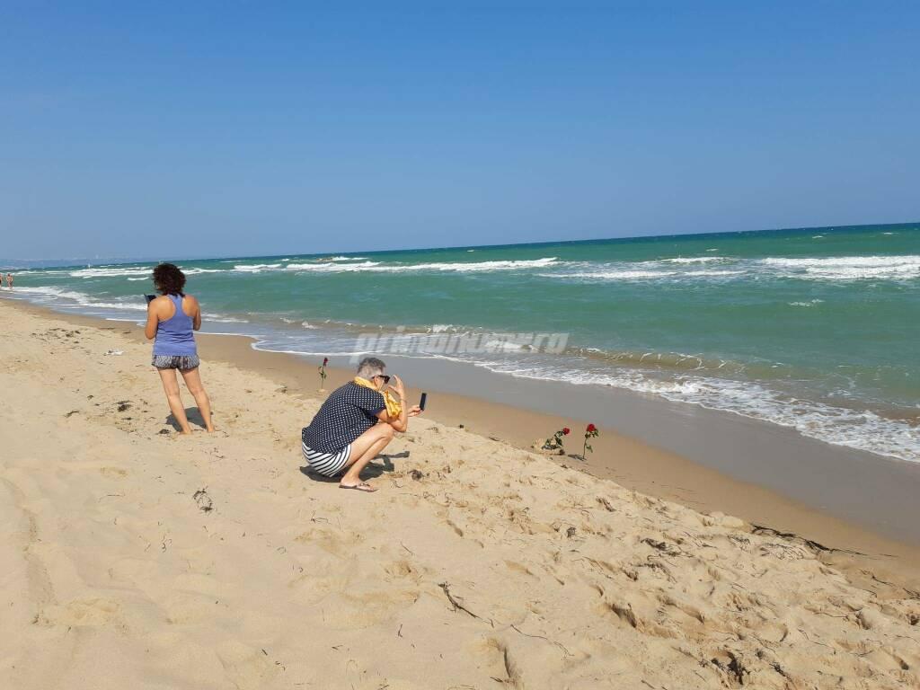 Rose sulla spiaggia a Petacciato