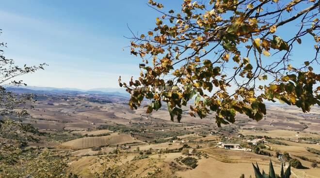 autunno paesaggio campagna guglionesi meteo