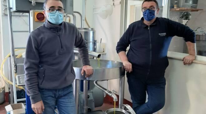 Poggio Sannita, produzione olearia 2020 scarsa ma di elevata qualità