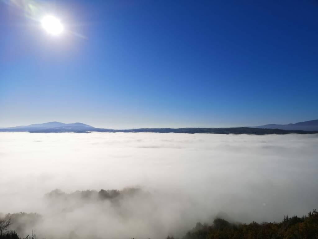 nebbia ferrazzano
