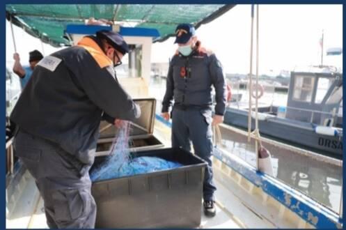 Guardia costiera controlli pesca
