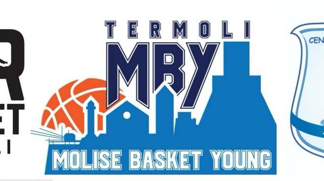 molise basket young
