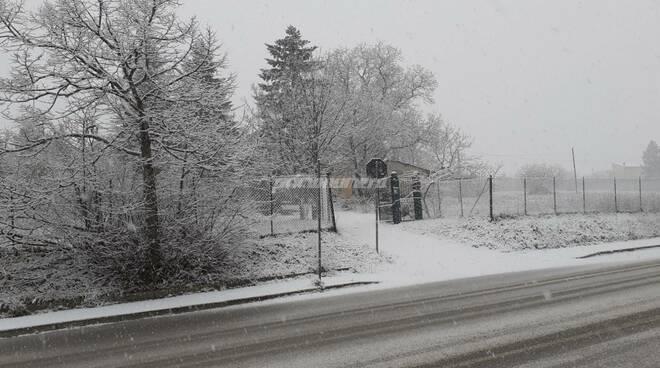 Campobasso neve