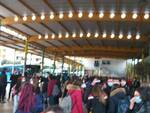 Terminal bus termoli studenti assembramenti