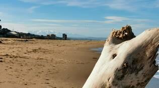 Spiaggia deserta inverno