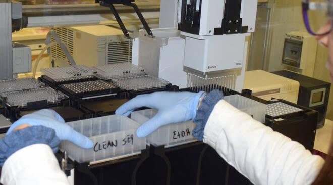 laboratorio genetica variante covid provette covid