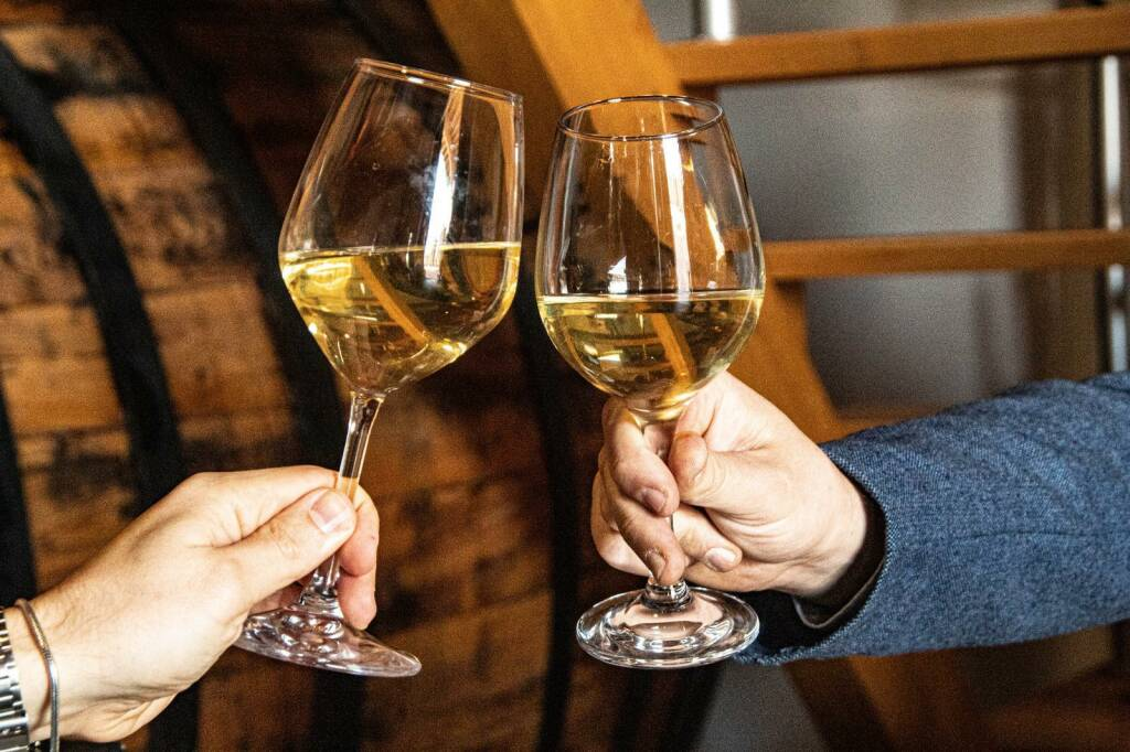 cantina molisana vini riccardo desiderio vigna