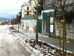 Alberi via Trivisonno